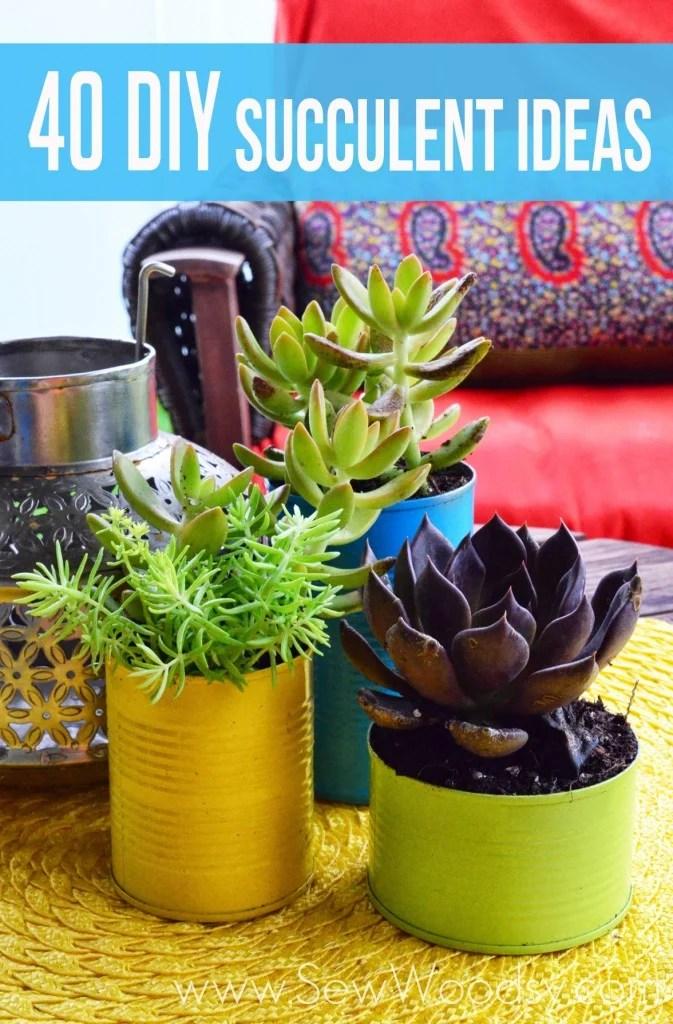 40 DIY Succulent Ideas from SewWoodsy.com