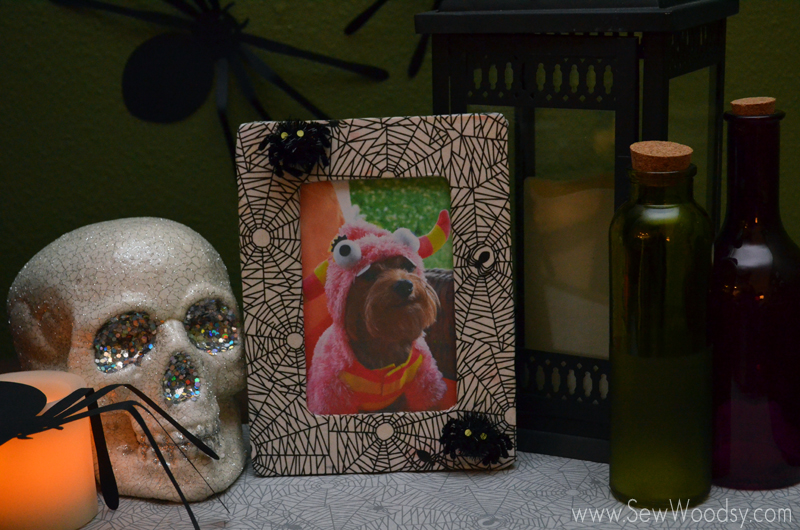Decoupage Spider Web Picture Frame from SewWoodsy.com #halloween