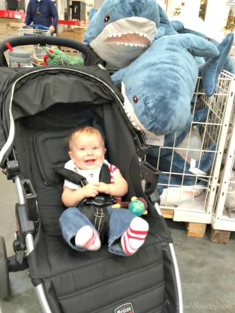 Ryder and the Stuffed Sharks at IKEA