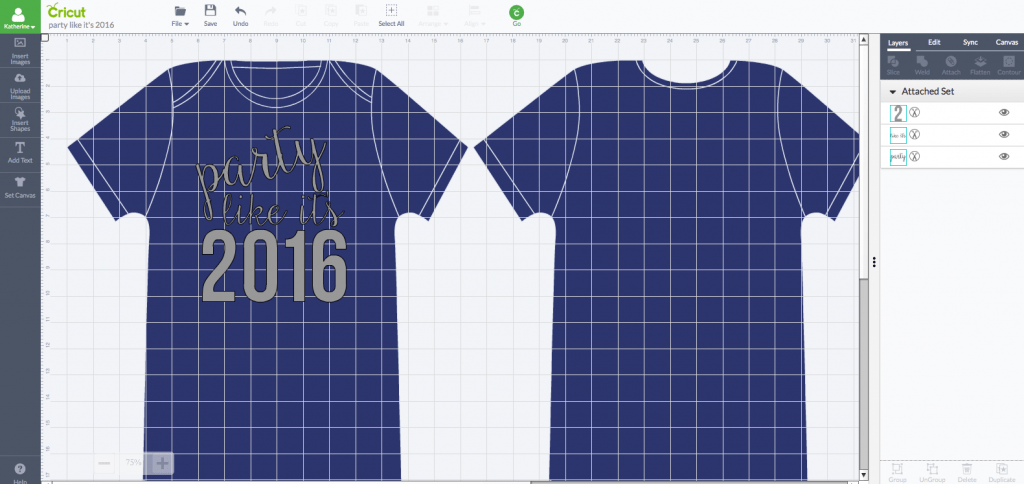 Party Like It's 2016 DIY Shirt