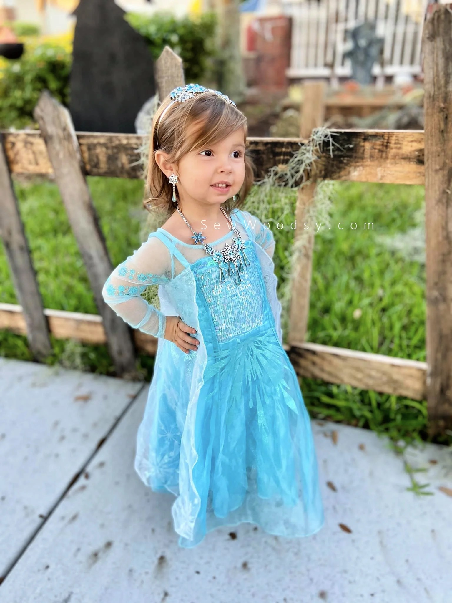 Elsa Toddler Costume