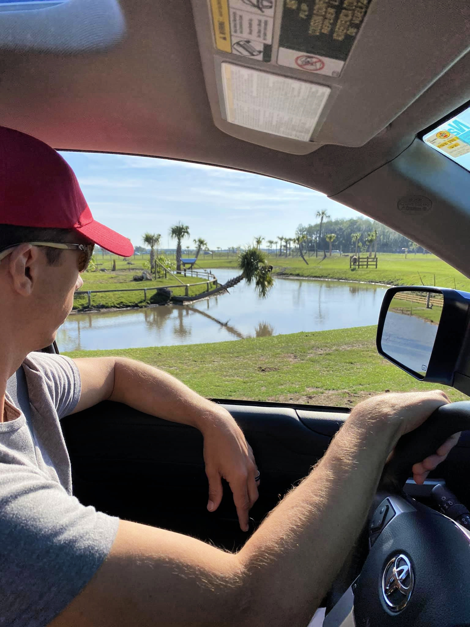 Driving around Wild Florida Drive-Thru Safari Park.