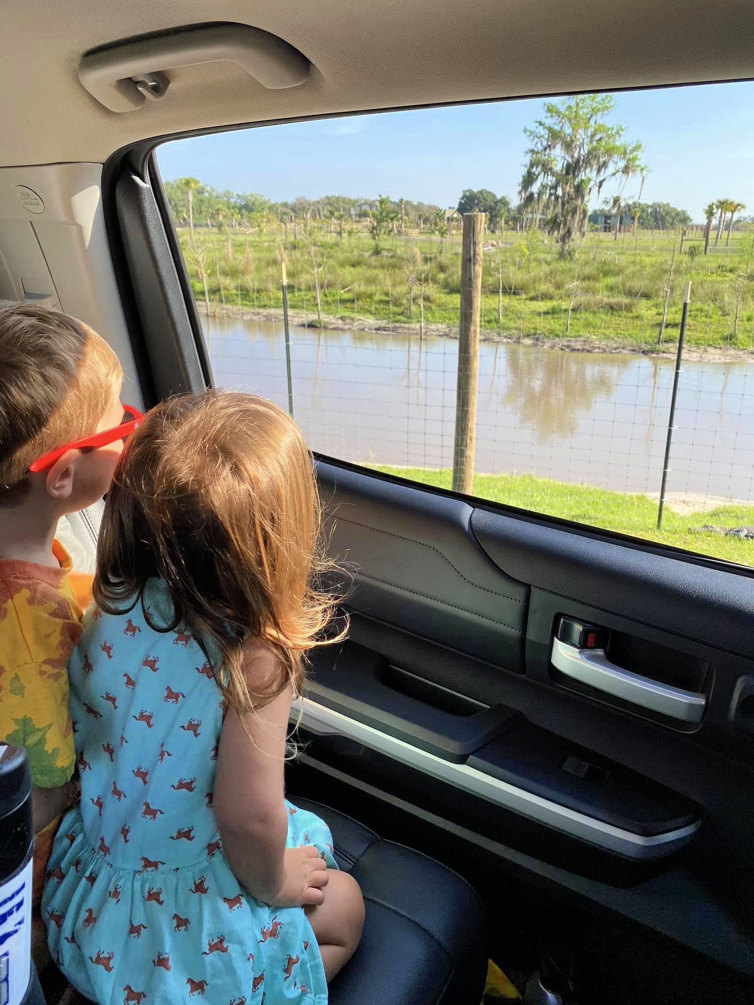 Kids looking out the window at Wild Florida Drive-Thru Safari Park