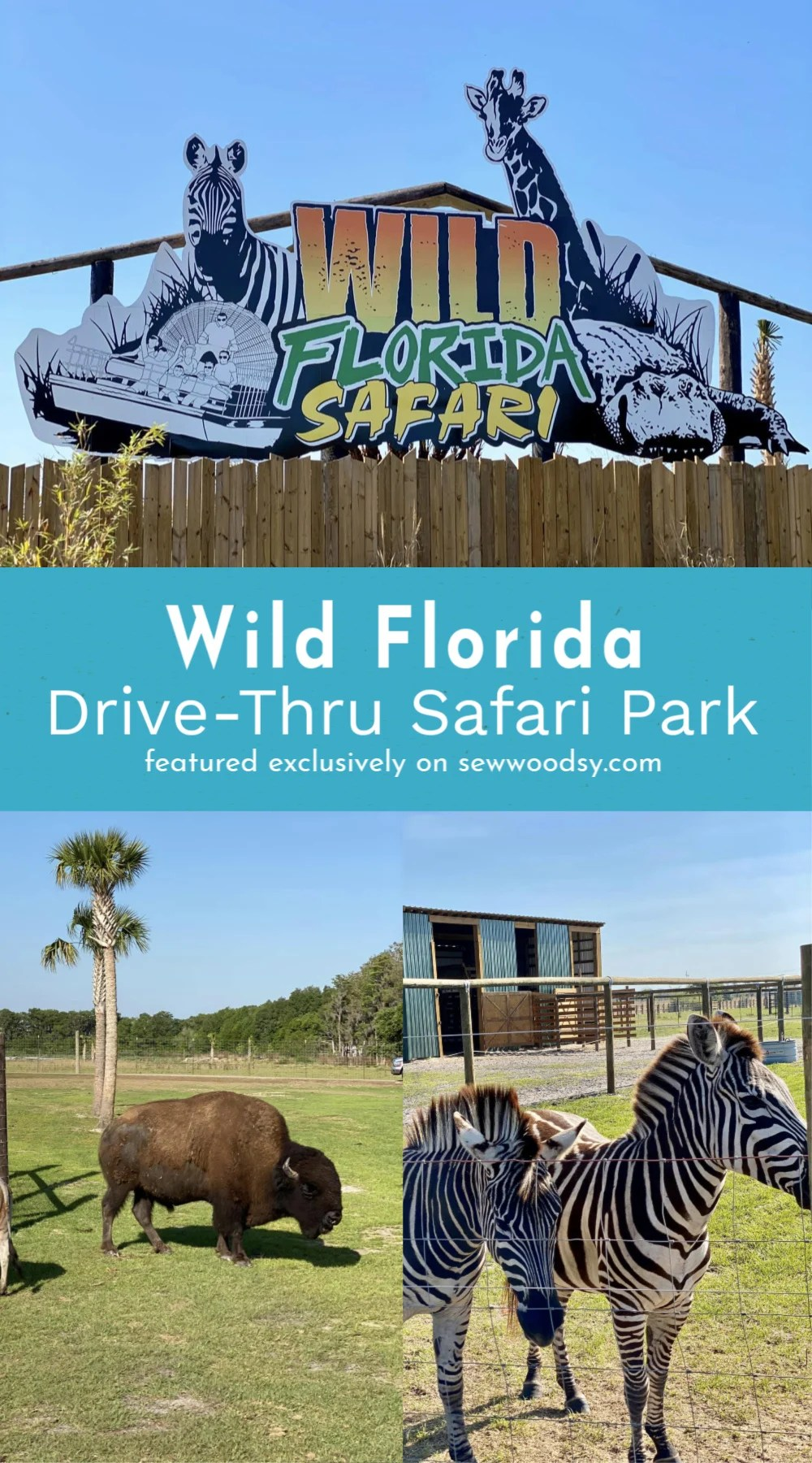Wild Florida Drive-Thru Safari