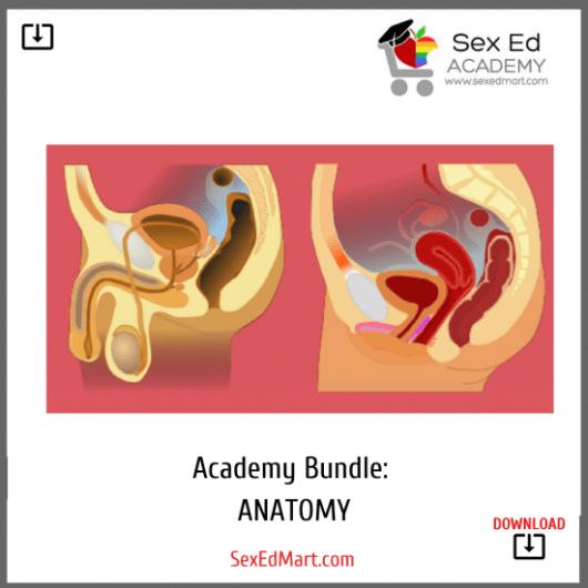 Academy Bundle Anatomy