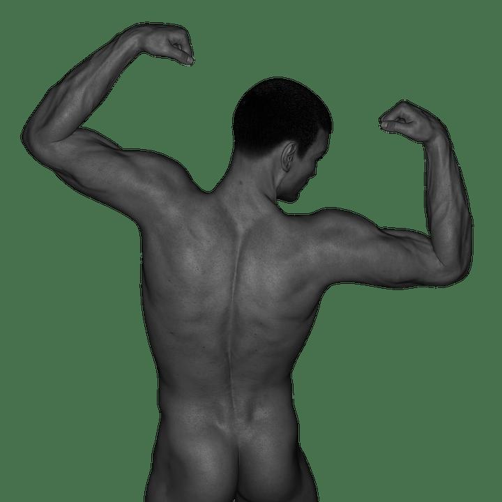 男性器官鍛鍊(1)概念建立篇