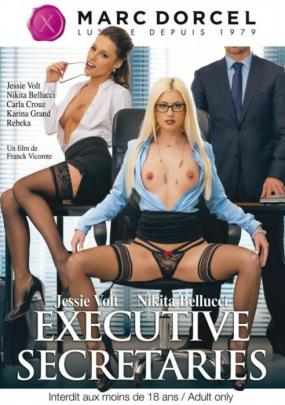 Executive secretaries (2016) - full free hd xxx dvd