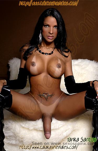 Guapas travestis mulatas con senos grandes y pollas duras.