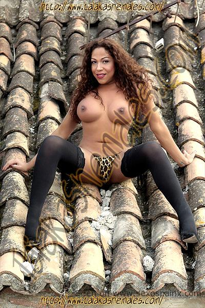 Transvestite naked on a roof with her legs spread.