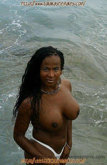 Modelos transexuales con grandes pechos y exuberantes cuerpos en tanga.