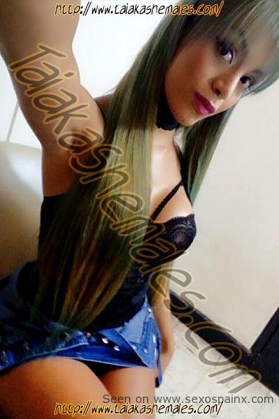 Selfies de travestis colombianas con tetas ricas y polla suculenta.