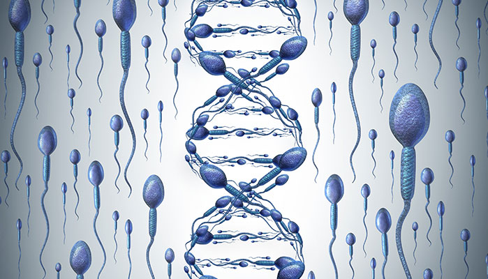 The Role Genetics Plays in Attracting A Partner