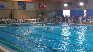 waterpolo, premia, dhf, dhm