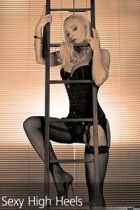 Dea Donatella Blinds