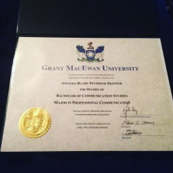 Bachelor of Communication Studies, Major in Professional Communications
