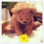 Mr. Jone's Orphanage had cute teddies everywhere. Glen and Janelle took this picture of one little guy trying to pick up a flower!