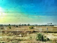 Sorry, very dirty window on the bus, but this is what the country side looked like south of Phnom Penh.