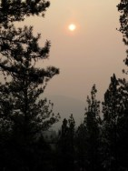 Taken in the evening. The forest fires were bad this summer....but the sky did look cool!