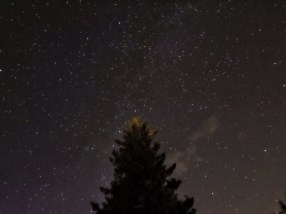 This is a photo taken from my back deck. The stars in Alberta are so bright! Nice work Lula!