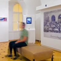 Nova retejo por la Viena muzeo
