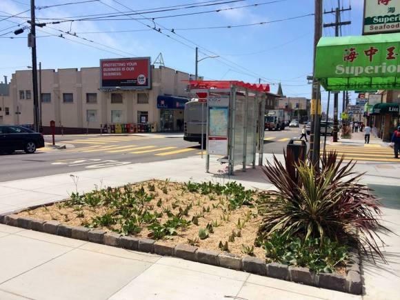 The size of the planters that came with the bulb-outs on Balboa irked some residents. Photo: SFMTA