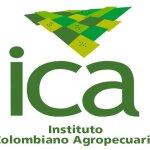 Boletín 147, ICA territorialidad
