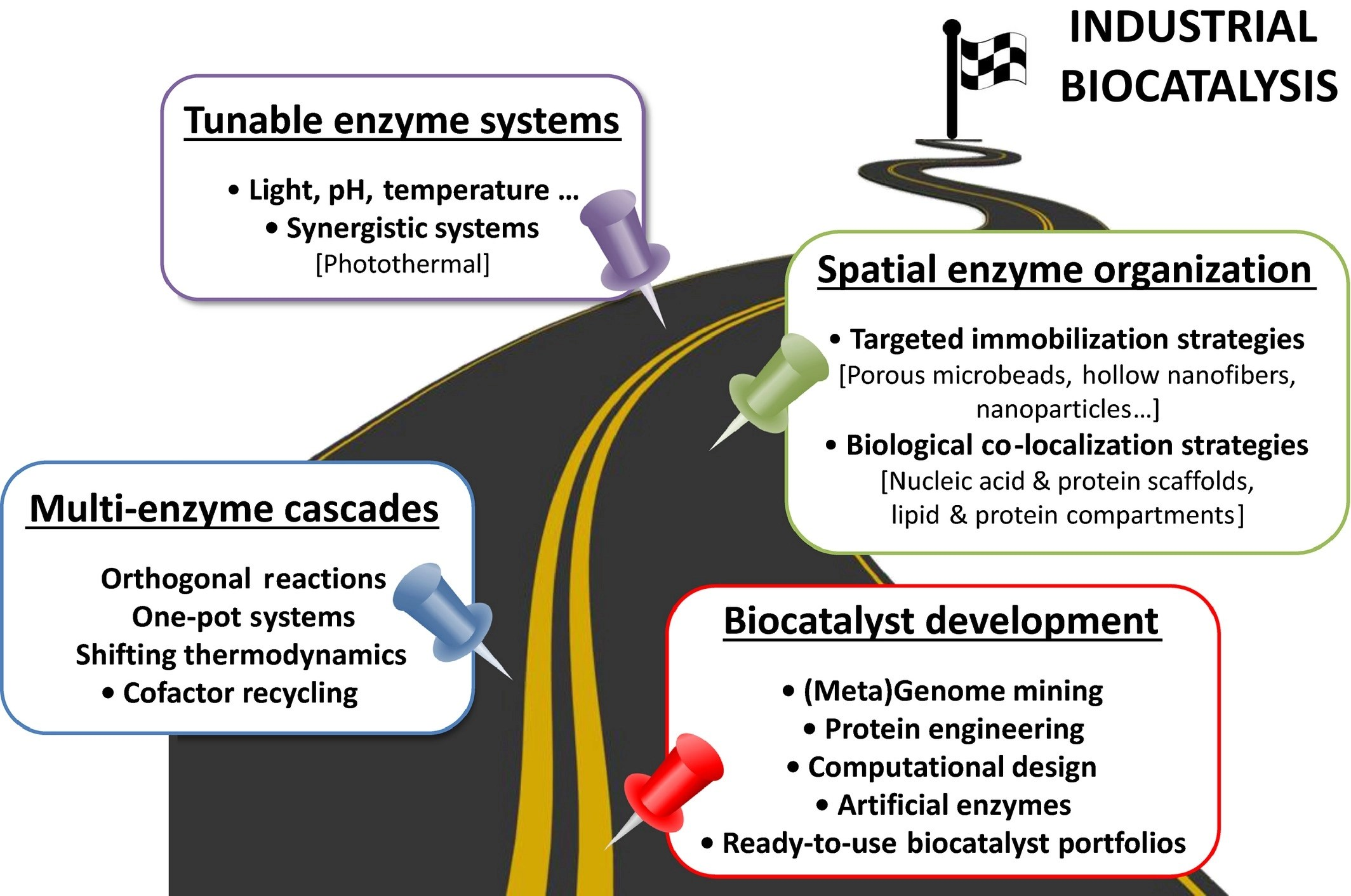 A Roadmap For Biocatalysis Functional And Spatial