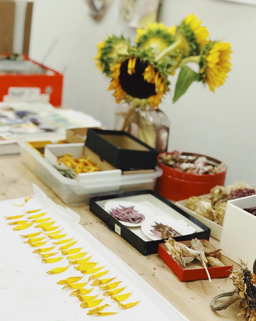 Nina Meledandri's studio setup