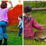 animalele-de-companie-pentru-copii