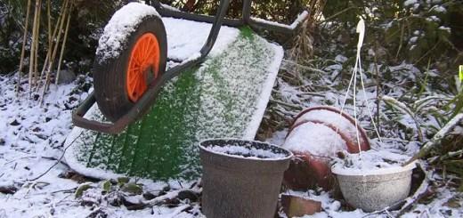 cum-pregatesti-gradina-pentru-iarna