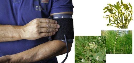 5-plante-medicinale-care-te-ajuta-in-caz-de-hipertensiune-arteriala