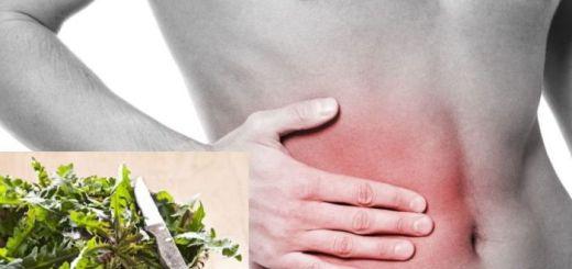 10 plante medicinale care ajuta la refacerea ficatului