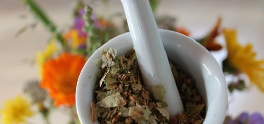 Cele mai bune plante medicinale pentru drenarea bilei si eliminarea calculilor renali