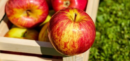 Merele. Fructele care tin la distanta colesterolul
