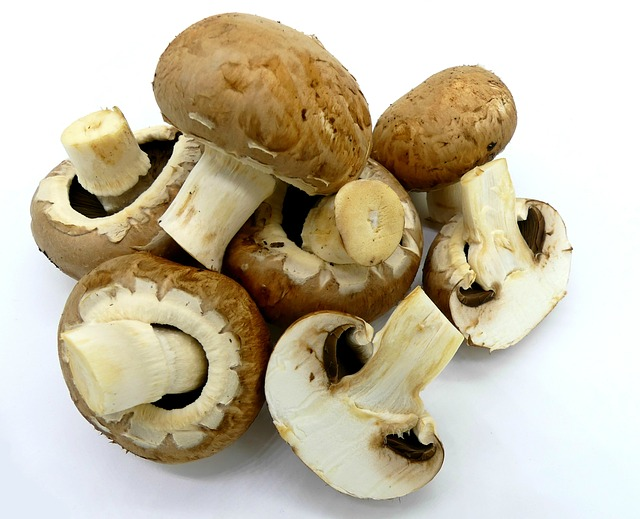 Beneficiile ciupercilor champignon. De ce este bine sa le consumi