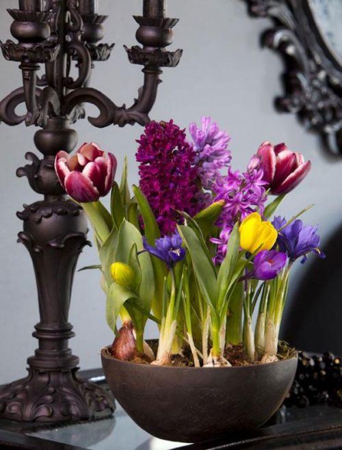decorarea casei cu flori de primavara 1