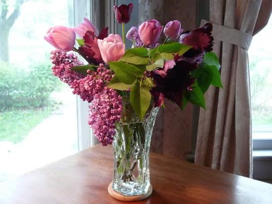 liliac in vaza