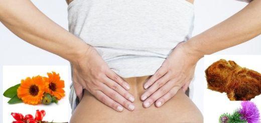 remedii naturiste dureri de rinichi