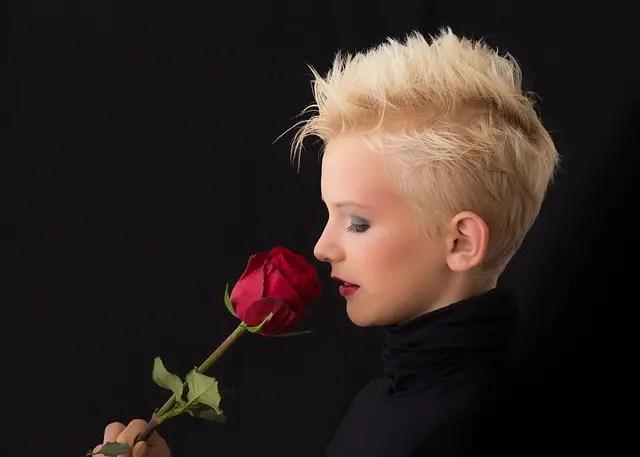 trandafirii, florile iubirii