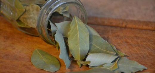 aromaterapie-dafin