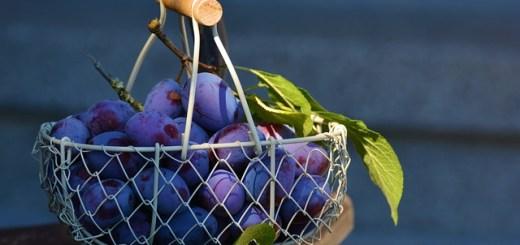 Prunele. Neasteptatele beneficii ale unui fruct considerat banal