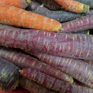 Morcovul violet. O leguma pe cat de ciudata, pe atat de sanatoasa