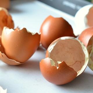 15 utilizari mai putin cunoscute ale cojilor de oua
