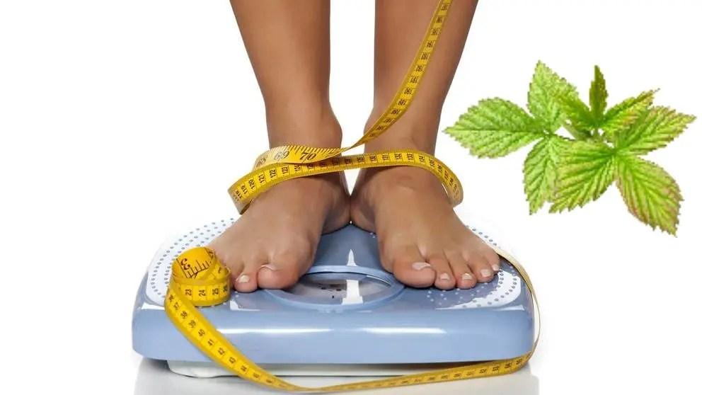 Dieta cu frunze de zmeur. Cum sa ai o silueta frumoasa cu ajutorul ceaiului din plante