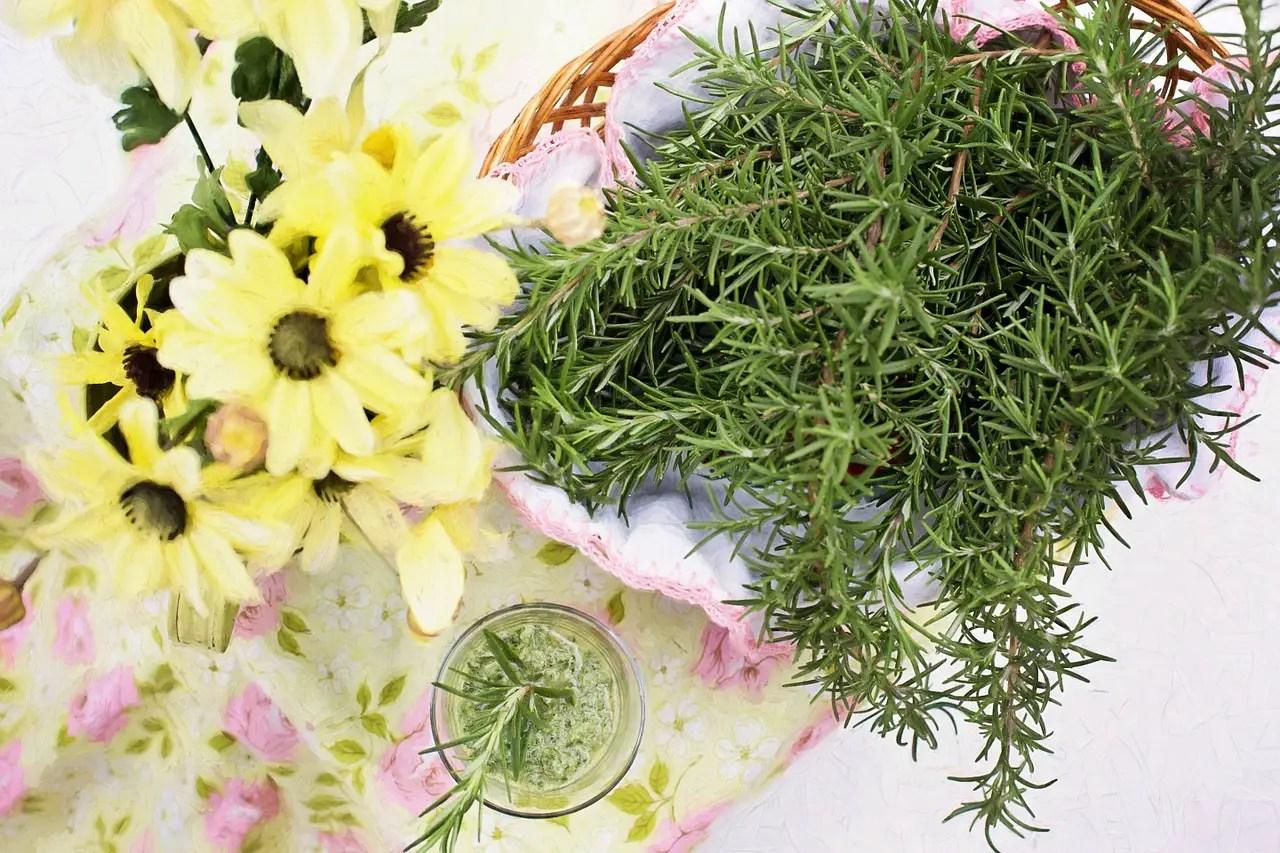 4 plante ce protejeaza creierul de depresie, anxietate si Alzheimer