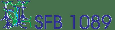 SFB 1089