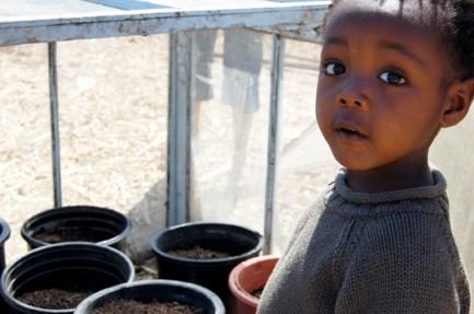 Feyu Diallo, son of Marcel, at Village Bottoms Farm 0509, web
