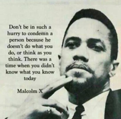 Malcolm X pic & quote