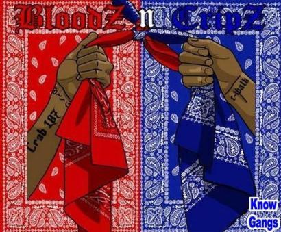 'BloodZ n CripZ Know Gangs'