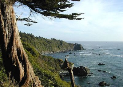 Heavenly views of redwoods and the ocean line the highway to hell at Pelican Bay State Prison in Crescent City, Del Norte County, 13 miles from the Oregon border on the rugged coast of the far northwest corner of California.